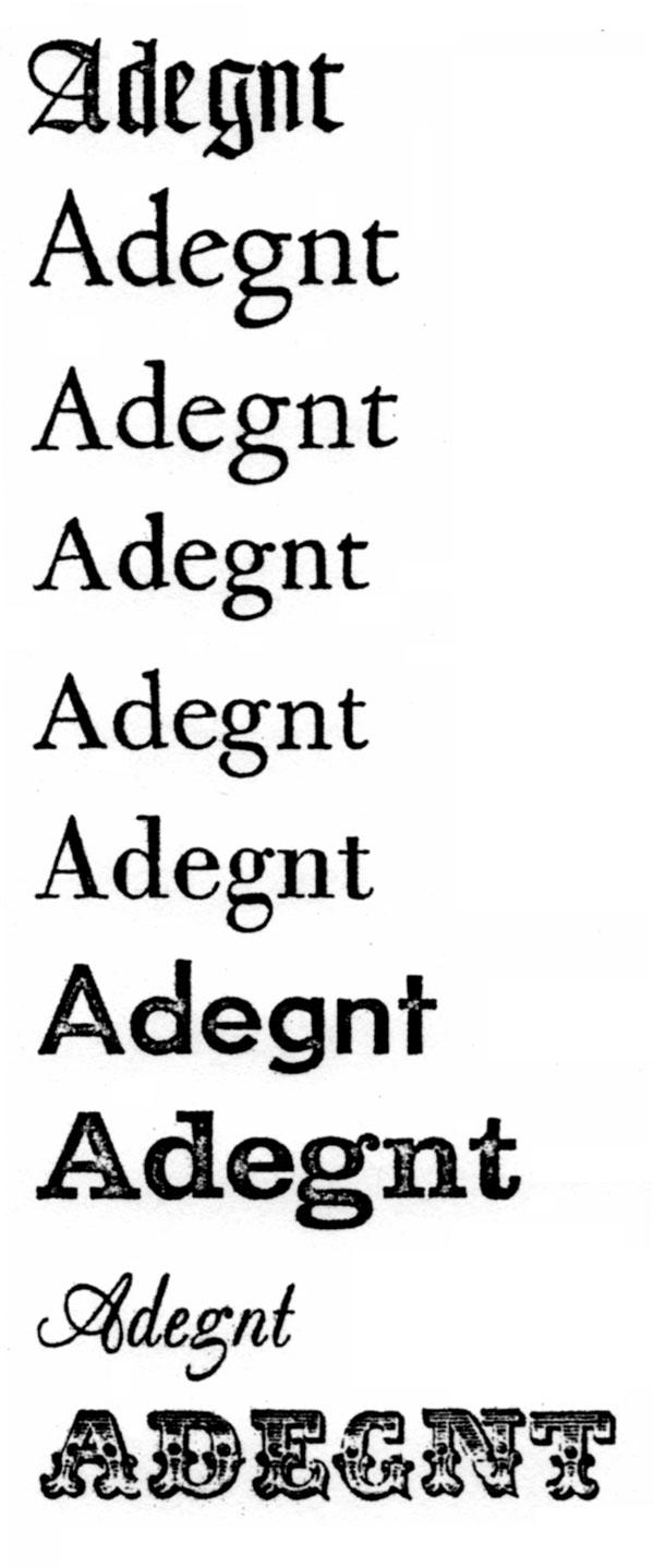 Type Category System